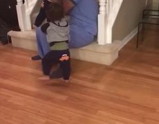 #CUTE: Trying to get up the stairs