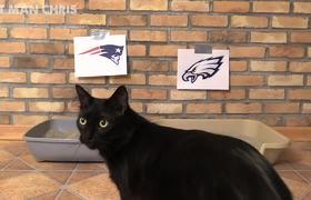 Cat Predicts #SuperBowl2018 WINNERS!