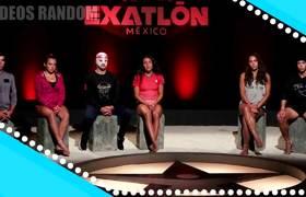 Exatlón México - ¿Antonieta Gaxiola apoya a Daniel Corral y no a los contendientes?