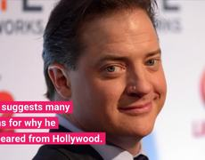 Terry Crews Supports Brendan Fraser's Groping Claims