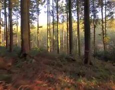 Larisa Gosla- I Remember, OFFICIAL MUSIC VIDEO