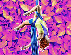 Mold Your Body with Aerial Dance