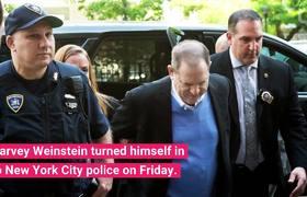 Rose McGowan Speaks of Weinstein's Arrest