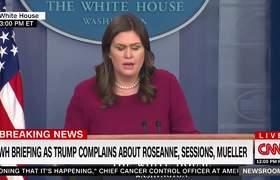 Sanders: Trump's 'Roseanne' Tweet Simply Points Out Media Bias