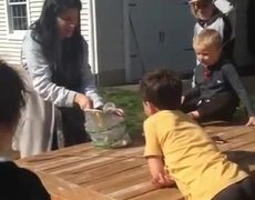#VIRAL: Mom shows kids the proper way to release their butterfly formerly their caterpillar