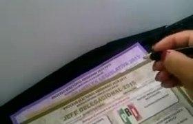 Ciudadana lleva su plumón para votar