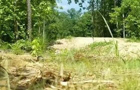 #VIRAL: Jumping at Pocahontas State Park