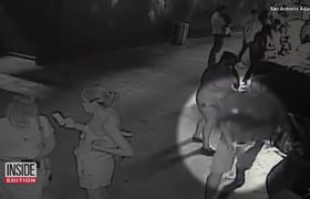 Thieves in hot water after stealing a shark from San Antonio Aquarium