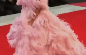 Going Gaga over couture at Venice Film Festival