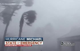 Hurricane Michael rips roofs off buildings as it strikes Florida
