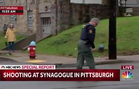 Shooter In Custody After Pittsburgh Synagogue Shooting