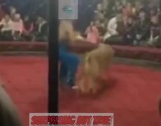 #VIRAL: Leon ataca a niña en la cara durante funcion de circo en Rusia