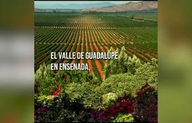 Acueducto Valle de Guadalupe - Gobierno del Estado de Baja California