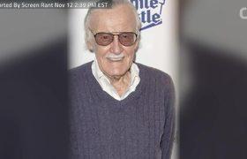 Marvel Legend Stan Lee, 95, Passes Away