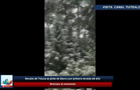 Nevado de Toluca se pinta de blanco por frente frío número 10