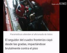 AFICIONADO DE #XOLOS CAE DESDE LAS GRADAS; SE ENCUENTRA GRAVE!