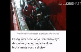 AFICIONADO DE XOLOS CAE DESDE LAS GRADAS; SE ENCUENTRA GRAVE!