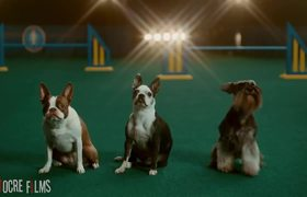 Preview Funniest Superbowl LIII Ads
