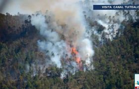 Incendio forestal en Veracruz controlado casi en su totalidad