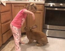 Giant Rabbit and Little Girl are Best Buds