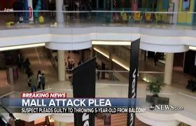Suspect accused of throwing 5-year-old from mall balcony pleads guilty