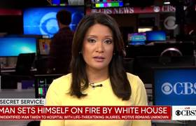 Man sets himself on fire near White House
