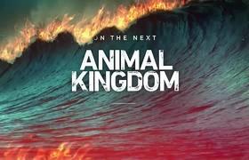 Animal Kingdom 4x03 Promo