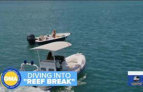 Poppy Montgomery on new ABC drama 'Reef Break'