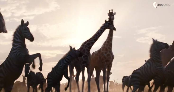 Circle Of Life Scene The Lion King 2019