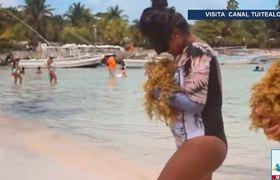 Ayuda a recolectar sargazo familia que vacaciona en Quintana Roo