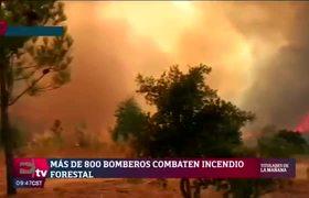 Más de 800 bomberos combaten incendio en Portugal