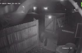 Bear sneaks into Colorado marijuana dispensary, steals trash can