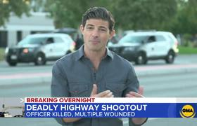 Officer, suspect die in traffic stop shootout