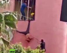 Atrapan a ladrón y lo golpean como una piñata en México