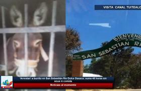 'Arrestan' a burrito en San Sebastián Río Dulce Oaxaca