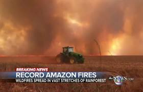 Amazon rainforest struggling after record wildfires