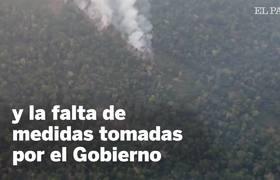 Preocupación mundial por el incendio del Amazonas