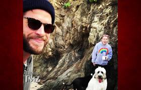 Miley Cyrus To Keep All Pets In Liam Hemsworth Split