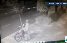 Sujeto tala árbol para robar dos bicicletas en Insurgentes CDMX