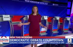 10 Democratic candidates on debate stage for 1st time