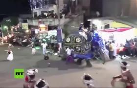 #VIDEO: Elefante embiste a una multitud en un desfile de Sri Lanka