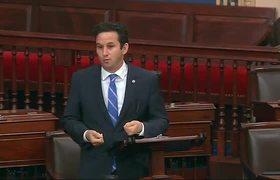 Senate Democrats call for gun legislation debate