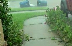 #Imelda #Houston #Storm