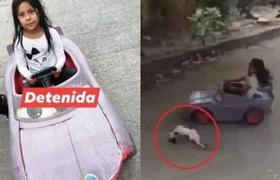 #VIRAL: GIRL AT HIT WITH A CAR TO A CAT IN THE STREET