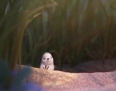 Piper - Disney Pixar - Oscar winning Short Movie