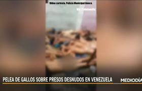 #VIDEO: Cockfight over naked prisoners in jail in Venezuela