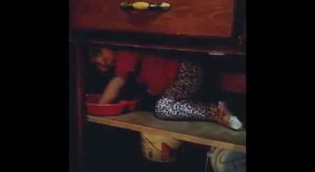 #DROSS: Lo que mora en la alacena