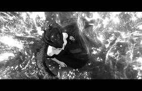 Maleficent: Mistress of Evil |