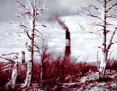 #PS4 - Werewolf The Apocalypse Earthblood Trailer (2019)