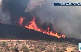 Incendios en Baja California han dejado un saldo de 3 muertos